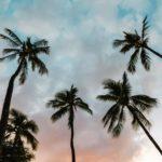 ハワイの不動産投資のデメリット3つ